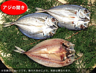 無添加【B】壱岐の手造り干物セット「大漁」鯵のひらき