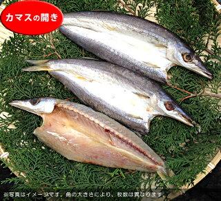 【B】無添加壱岐の手造り干物セット「大漁」かます開き