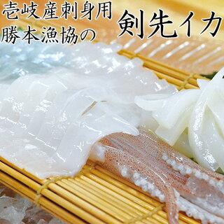 【AA】【1本釣り】壱岐産天然剣先イカ勝本漁協/送料無料/送料込