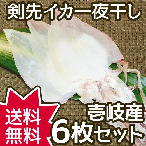 【AA】長崎県壱岐産 剣先イカの一夜干し 6枚セット 刺身で食べれるほどの新鮮なケンサキイカを使用。干物 ギフト対応可 送料無料!