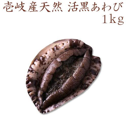 【H】【送料無料】壱岐産天然活黒あわび 1kg/アワビ/鮑/活あわび/お正月/御祝