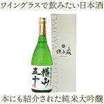 【A】横山五十ホワイト