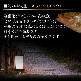 1希少な高級魚きじはた関西ではアコウ長崎・福岡ではアカアラ