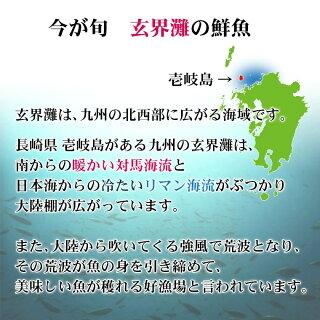 壱岐島今が旬