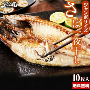 ジャンボ さば一夜干し 10枚 送料無料 鯖 さば サバ 瞬干 国産 開き 肉厚 大判 干物 焼き魚 特大サイズ ギフト プレゼント 海鮮 食べ物 2020 ポイント消化