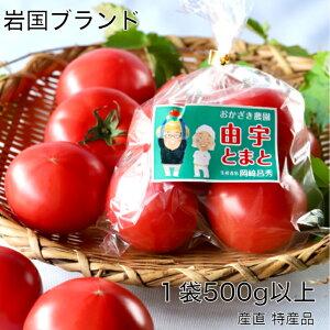 由宇とまと 500g 桃太郎 岩国ブランド 特産品 トマト農家 おかざき農園