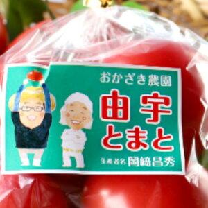 由宇とまと1kg 送料無料(500g2袋) 桃太郎 岩国ブランド 特産品 トマト農家 おかざき農園
