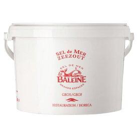 バレーヌ(BALAINE)セルグロ(粗塩)5kg(5000g)