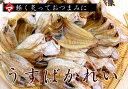 《送料別》若狭小浜のうすばかれ【あす楽対応】【楽ギフ_ポイント0113】津田孫兵衛【RCP】