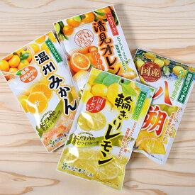 ドライフルーツ 国産 かんきつ系 大袋 4種類セット 南信州菓子工房 #605 ※メール便のため配達日時指定不可。