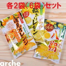 ドライフルーツ 国産 かんきつ系 大袋 3種×2袋セット(計6袋) 南信州菓子工房 #605