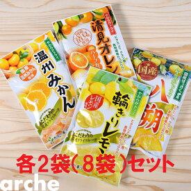 ドライフルーツ 国産 かんきつ系 大袋 4種×2袋セット(計8袋) 南信州菓子工房 #605