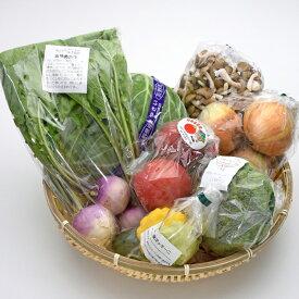 南信州のとれたて産直便 ココロマルシェ 季節の農産物詰合せ(7種) VF35#602