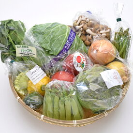 南信州のとれたて産直便 ココロマルシェ 季節の農産物詰合せ(9種) VF50#602