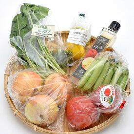 南信州のとれたて産直便 ココロマルシェ 季節の農産物(5種)とレストランドレッシング詰合せ VFF40#602