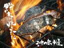 送料無料! 高知県 沖の島水産 かつお わら焼きたたき2節(計約600g)セット(冷凍便)
