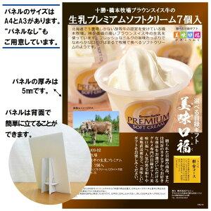 二次会 景品に A4パネル付き 選べる 目録 ギフト 十勝橋本牧場プレミアムソフトクリーム うこんコース