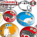 迷子札 猫 首輪 小さい ステンレス 雑貨 名前入り★ 大型猫小型猫 猫種ごとのデザイン◎ 愛猫のお名前を迷子札にお入…