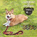 中型犬 首輪 ハーフチョーク (リード付き)【全4色】Mサイズ 丈夫な編み紐・チェーンタイプ