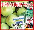 「手作り梅酒セット」【送料無料】