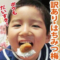 □【送料無料】訳あり梅・はちみつ梅 塩分5%お子様にも人気の甘口梅干!大盛り!900g詰め