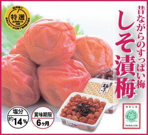 【紀州みなべ特選南高梅】しそ漬梅 1000g角タル・簡易包装 塩分約14% 和歌山県産 産地直送