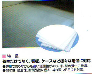 プラスチック段ボールシート(3mm厚)10枚