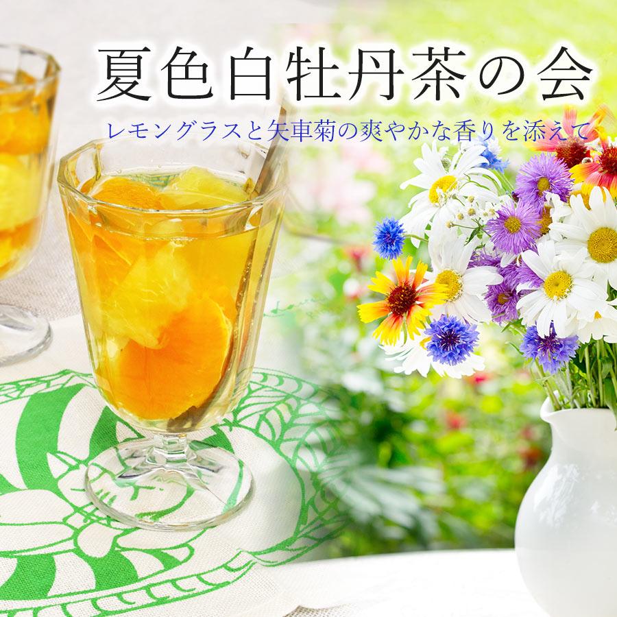 【福袋】7月は夏色白牡丹茶!真夏にゆるゆる楽しむ台湾茶の会