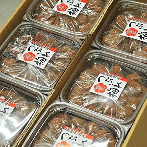 紀州南高梅 訳あり 梅干し L玉 サイズ つぶれ梅 12kg(1kg×12個入り) ハチミツ漬け 塩分8%(業務用セット)送料無料※北海道、沖縄、離島は1,000円