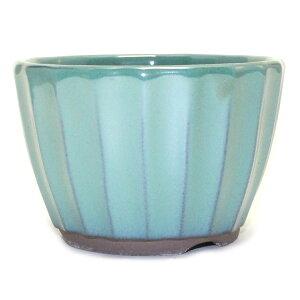 盆栽鉢 3号 菊型小鉢 緑色 織部釉 瀬戸焼 送料無料