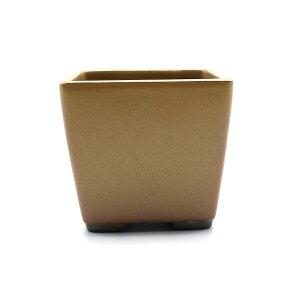 盆栽鉢 山野草鉢 正角 瀬戸焼 (3号(約8.7センチ), 黄釉(黄土色)) 送料無料