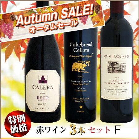 【オータムセール】特別価格 赤ワイン 3本セット F