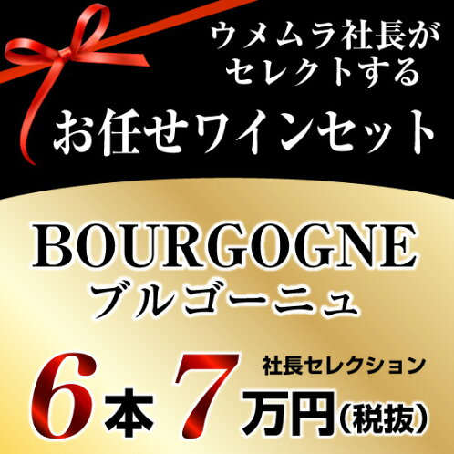 社長セレクションブルゴーニュワイン6本セット(7万円)