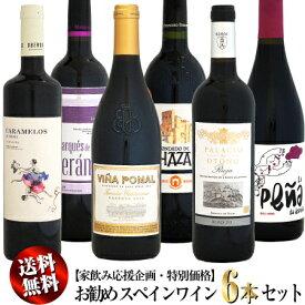 【家飲み応援・特別価格】送料無料 お勧め スペインワイン 6本セット