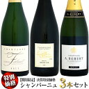 【期間限定】決算特別価格 シャンパーニュ 3本セット
