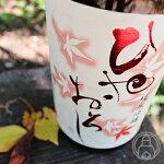 梅乃宿ひやおろし720ml【梅乃宿酒造/奈良県】【クール便推奨】【日本酒】