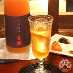 京都梅酒1800ml【招徳酒造/京都】