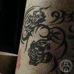 タイガー&ドラゴン720ml【四元酒造/鹿児島県】【焼酎】