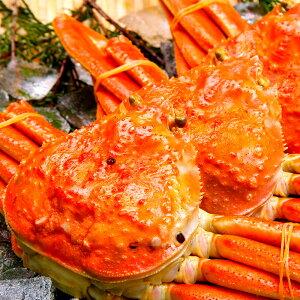 ズワイガニ 姿 特大 厳選ビッグサイズ 贈答 ギフト 天然 ずわい蟹 姿 約1kg×1尾