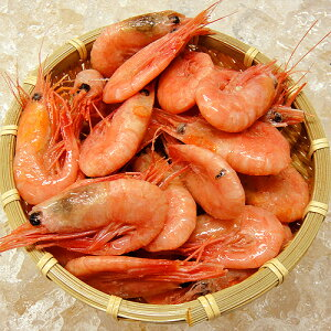 甘エビ ボイル 急速冷凍 殻付 甘海老 エビチリ フライ グラタン 天然 甘えび ボイル 約1kg