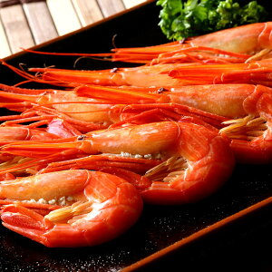 北海シマエビ 北海道産 縞海老 絶品海老味噌 ボイル済み 北海しまえび 約500g