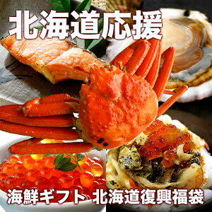 【オマケ付き】 北海道 海鮮ギフト 復興福袋 海産物 詰め合わせ 豪華セット プラスワン 食品ロス対策 お取り寄せグルメ 送料無料