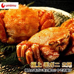 豪華海産物 特別パック 海夢限定 毛蟹 2尾セット