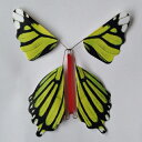 びっくりバタフライ Magic Kiss Butterfly(6匹セット)