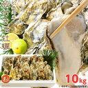 松島湾産 殻付き 牡蠣 10kg 送料無料 中・小サイズ込み 旬 の 生牡蠣 カキ 生食 BBQ 海のミルク 亜鉛 タウリン グリコ…