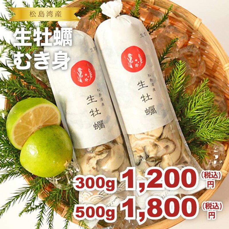 ★松島湾産 生牡蠣むき身 500gパック★
