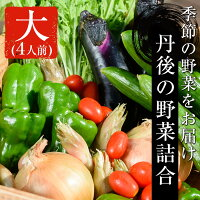 海の京都市場丹後の野菜詰合-大【いととめ】