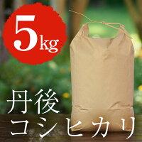 丹後コシヒカリ5kg【特別栽培米】【丹後王国】