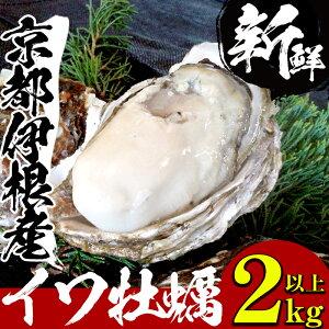 伊根産イワガキ(10個)約2〜2,5kg【伊根産イワガキブランド化グループ】