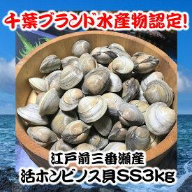 千葉県三番瀬産活ホンビノス貝SS3kg【白ハマグリ、大アサリ】45〜60粒程度